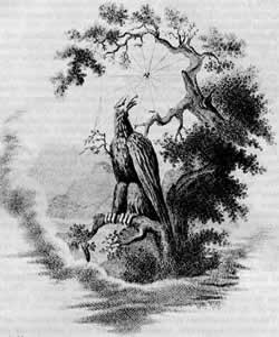 басня-крылова-орел-и-паук